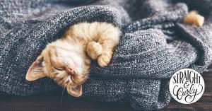 Straight and Curly Sleep